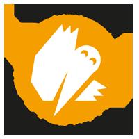 White_Ravens_2014_logo2